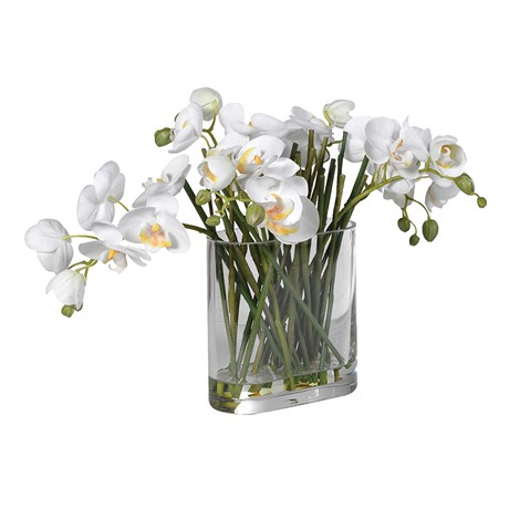White Orchid  Stems In Glass Oblong Vase