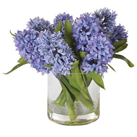 Blue Purple Hyacinth In Glass Vase